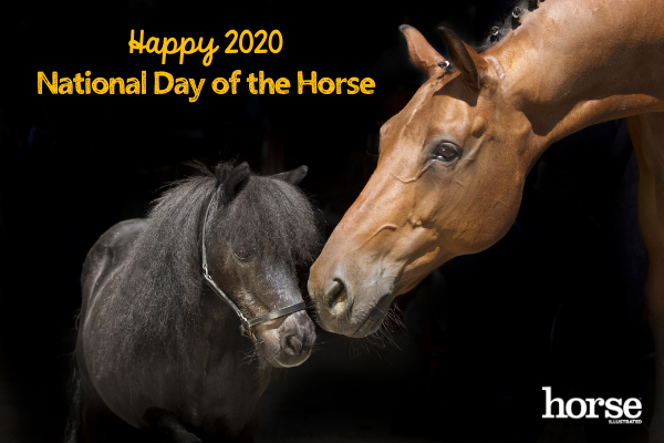 2020 National Day of the Horse