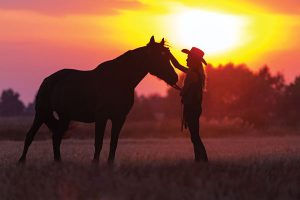 Horse and rider in sunset.
