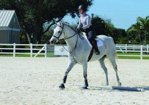 Horse and rider working on rhythm.