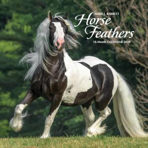Horse Feathers Calendar