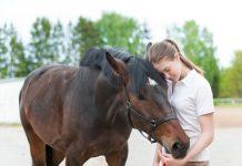 Horse Owners Coronavirus