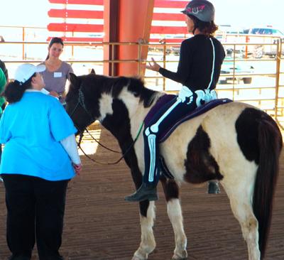 Horse Suitability Webinar