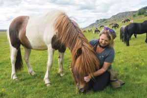 Icelandic Horse Sol with Jill