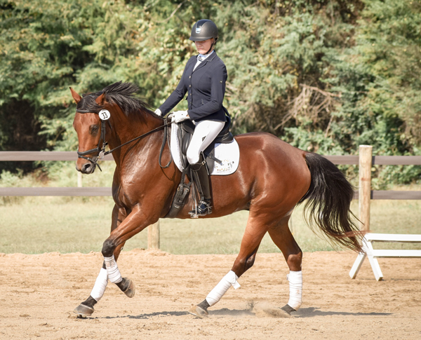 IDA Competition - intercollegiate riding