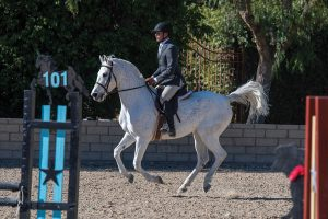 Isaias Ocegueda, head trainer at Love This Horse Equine Rescue