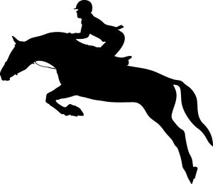 Jumping Rider Silhouette