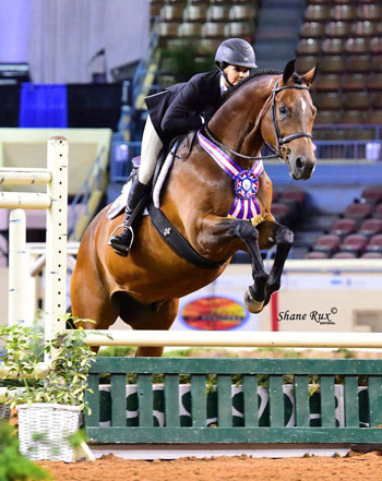 Jumping during the 2020 AQHA Worlds