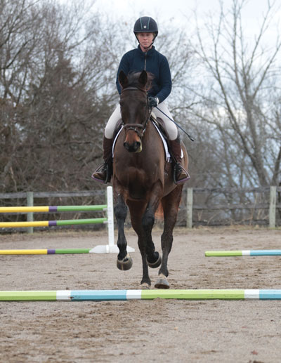 Perfect Jumping Line Using Cavaletti Poles