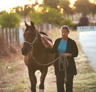 Kara Stewart doing walking exercise with a senior horse