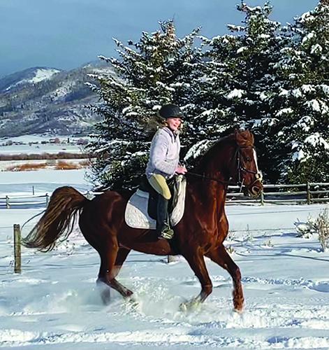 Morgan riding Kevin the saddlebred