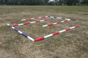 Poles forming labyrinth for horse training.