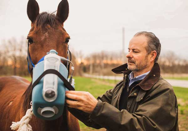 Nebulizer for Equine Asthma