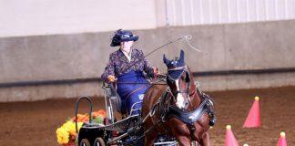 2019 Grand National and World Championship Morgan Horse Show