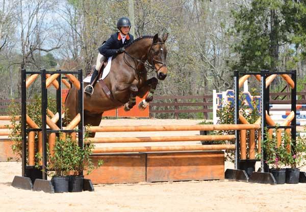 Equestrian College Degrees