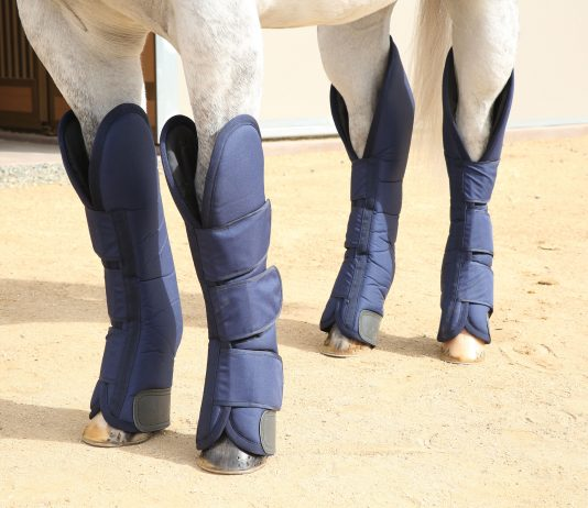 Professional's Choice Shipping Boots protect your horse's coronary bands, heels, pasterns, fetlocks, knees and hocks during transport.