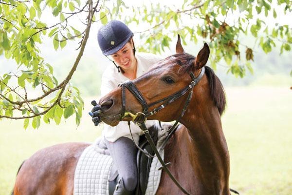 Rider giving horse treats.