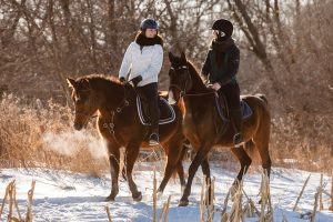 Horseback Riding in the Snow During Winter