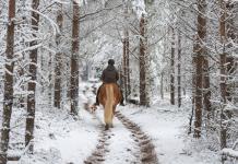 Riding on a Snowy Trail