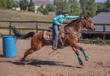 Barrel Racing Run