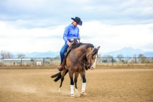 Schwartzenberger uses rein to help horse understand intentions in riding arena.