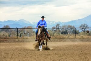 Schwartzenberger rounds the circle in the riding arena.