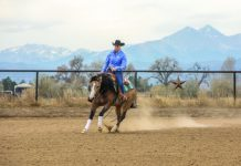 Schwartzenberger rounds the reining arena.