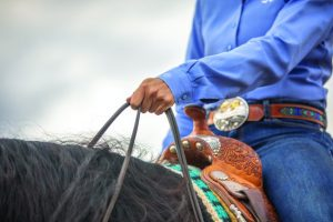 Schwartzenberger demonstrated hand motions in the reining arena.