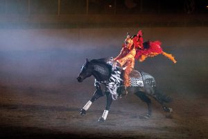 Horse and rider performing freestyle routine.