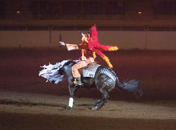 Horse and rider performing in costume.