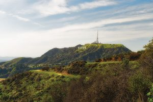 View of Hollywood hills.