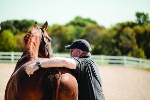 Rider inspecting horse.