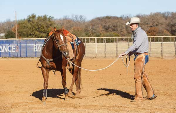 Western Training Longing