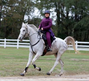 Sophia Carpentier and Perseveranze in the USEF Endurance National Championships