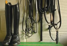 How to Clean Your Tack Locker - Tack Room