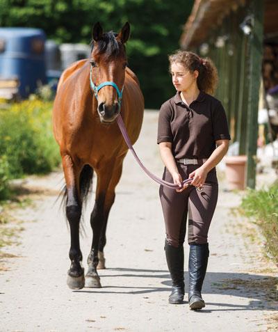 Handwalking a Horse - Leading a Horse
