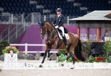 Steffen Peters and Suppenkasper at the Tokyo Olympics in the dressage Grand Prix qualifier.