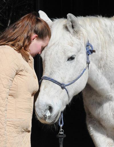 Snotty nose sick horse
