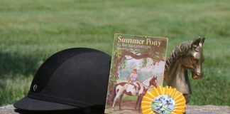 Summer Pony book