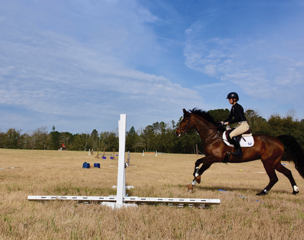 Phases of Jumping - Phase 1 - The Approach