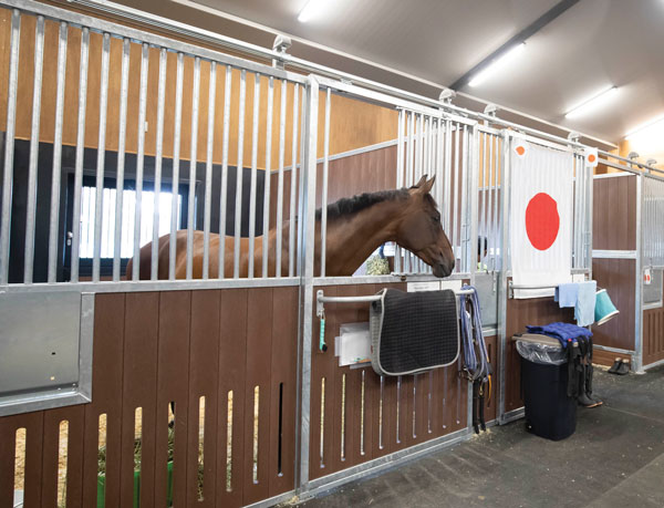 Tokyo Baji Koen Equestrian Park