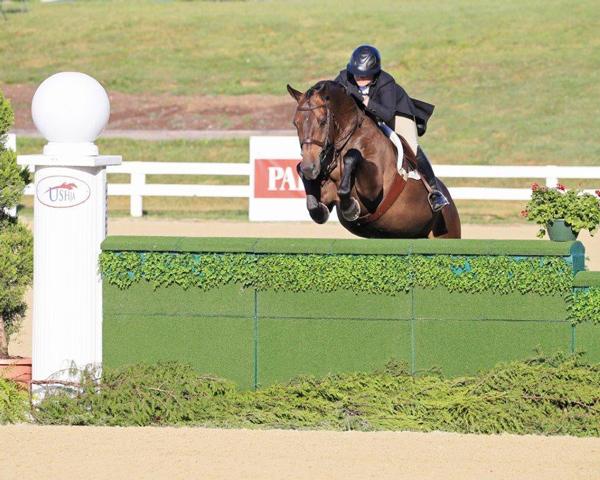 Victoria Colvin aboard El Primero, U.S. Equestrian National Horse of the Year