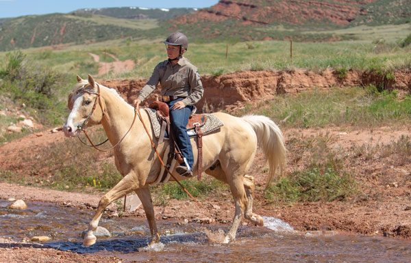 Teaching a Horse to Cross Water