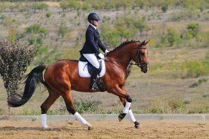 Woman riding horse.