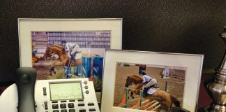 Work Life Horse Balance - Desk Photo