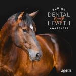 Zoetis Equine Dental Exams