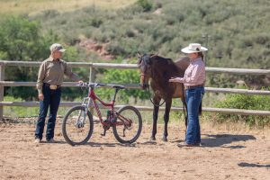 Introducing a Horse to a Bike