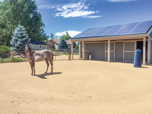 Designing a Horse Barn
