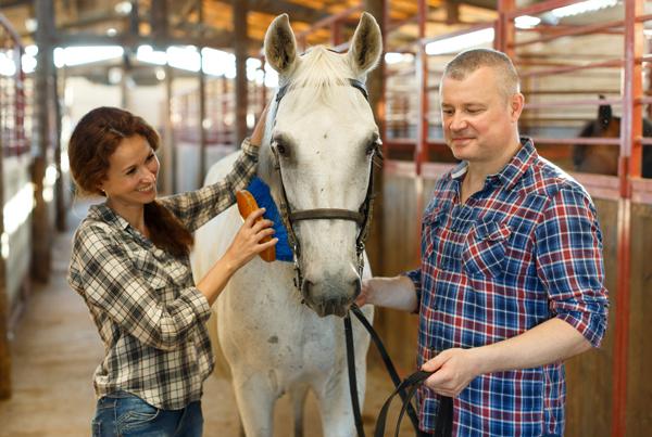 Bonding at the Barn