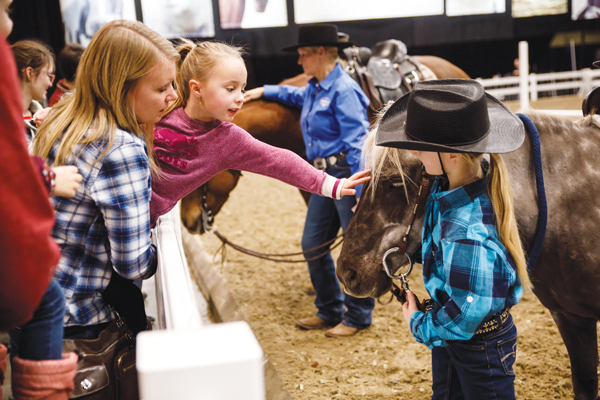 Family Fun at Horse Show