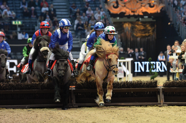 Shetland Pony Grand Prix at Olympia